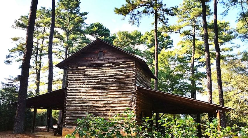 Old Buildings Log Cabin Old Log Cabin Taking Photos Pine Trees A Walk In The Woods Fayetteville N.C.