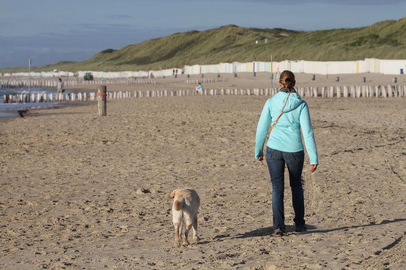 Full length of dog standing on shore