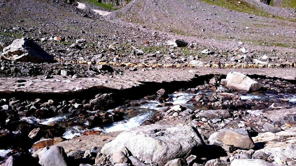 Arid Climate Glacier Natural Pattern Rock Formation Rocks Rough Shep Shepherd Snow