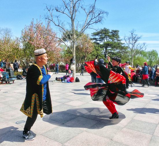 Dancing in the sunshine! Qingming Spring Group Of People Tree Clothing Real People Plant Nature Crowd Large Group Of People Lifestyles Outdoors