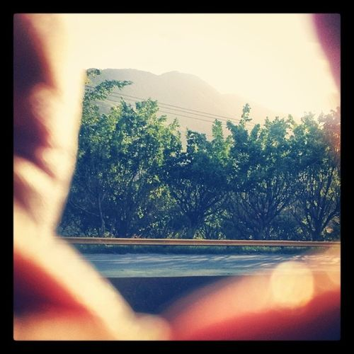 Angle Greashot Moving Instapic instagramer instaphoto instamoment l4l like4like likeitup liking likeforfollow niceshot shotbyme shotbys4 inthecar sunshine