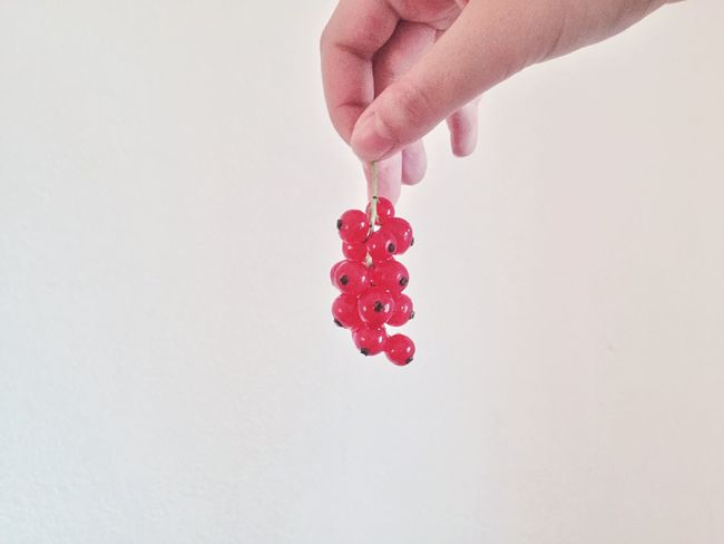 Red Berries White Hand Minimal