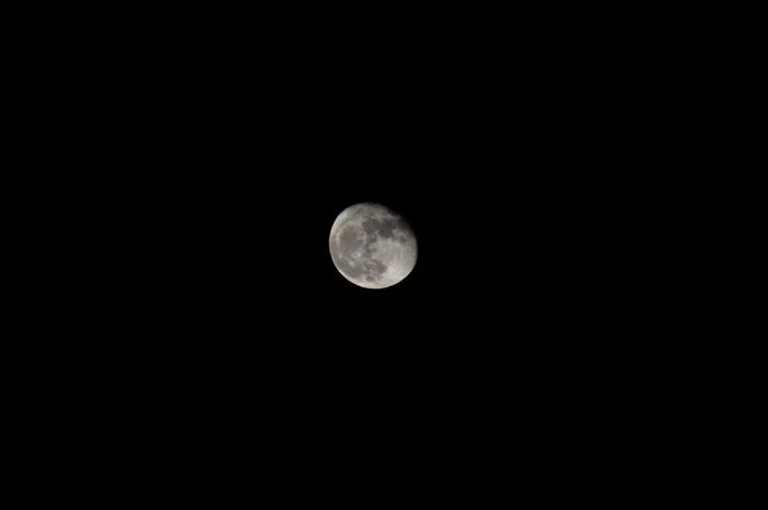 Super Moon, November 2016 Galaxy Moon Moon Shots Super Moon 2016 Astronomy Beauty In Nature Black Black Sky Clear Sky Moon Moon Light Moon Surface Moonlight Nature Night Night Sky No People Outdoors Planetary Moon Sky Space Space Exploration Super Moon Tranquil Scene Tranquility EyeEmNewHere