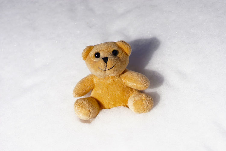 Childhood Outdoors Snow Stuffed Toy Teddy Bear Toy White Background