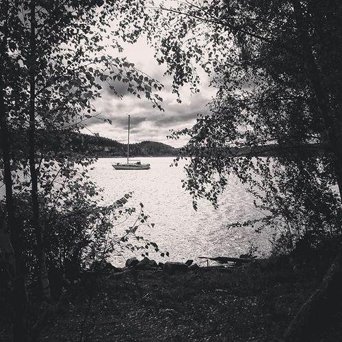 Halden Tyska Water Boat trees trær vann blackAndWhite svartHvitt høst fall autumn