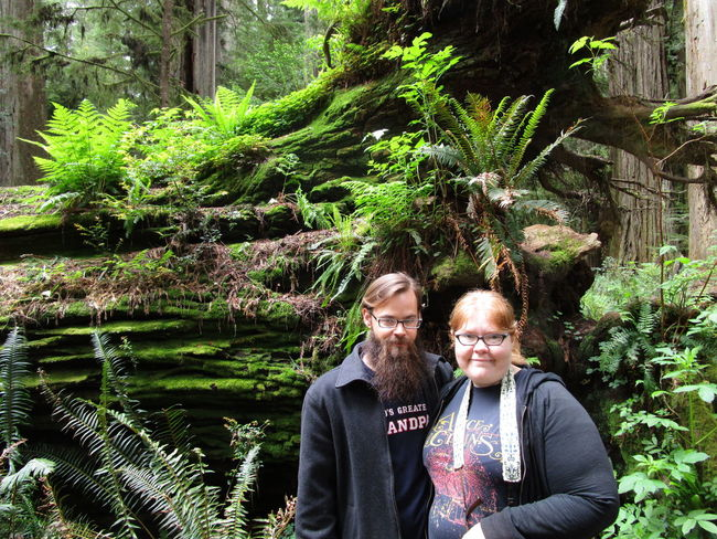 Day Ferns Green Color Leisure Activity Lifestyles Nature Outdoors Redwood Trees Smiles Young Adults