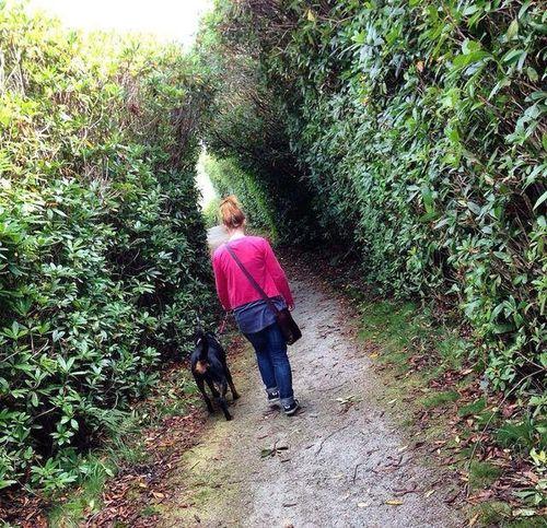 Adventure with Mum 💗 Dogs Rottweiler Dogoftheday Dogs Of EyeEm Rottweilerlove Rottweilerinstagram Rottweilerlife Rottweilergirls Rottweilerofinstagram Rottweileroftheday Walk Countryside Cornwall Uk Girlandherdog Bestfriend