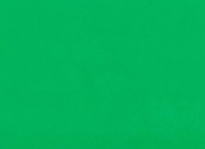 Full frame shot of green surface