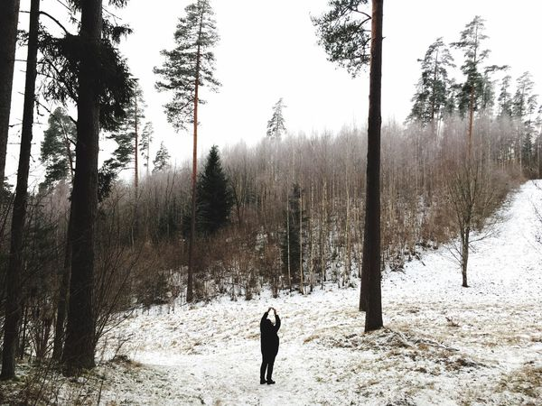 Tiny person, grand nature🌲 EyeEmNewHere Freedom Visitestonia Forestwalk Forest Photography Wintertime Nature Outdoors Snow Shades Of Winter An Eye For Travel