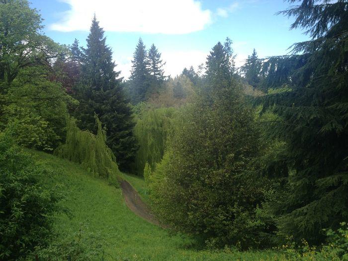 The Environmentalist – 2014 EyeEm Awards Oregon Landscape Nature
