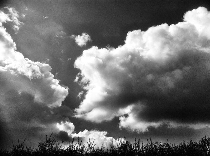 Blackandwhite Clouds And Sky AMPt_community NEM Black&white