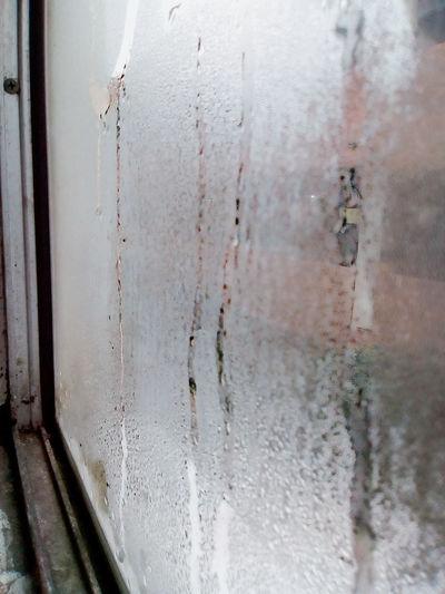 La soledad nos muestra quienes somos realmente... Day No People Weathered Indoors  Nature Cool