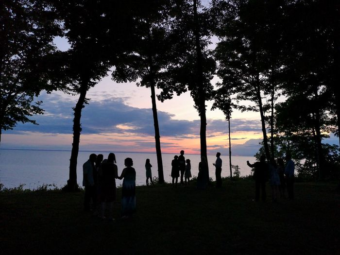 Evening by the lake. Dusk Silhouettes Tree Silhouette Sunset Water Sky Shore Horizon Over Water Tree Area Cloud - Sky