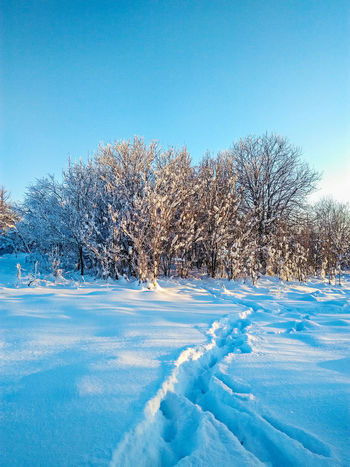 Russian winter, very cold and very beautiful Winter Russianwinter Russia Nature Frozen Sky Sun Snow Blue Nature Outdoors Cold Temperature No People Water Beauty In Nature Backgrounds Pixelated Day