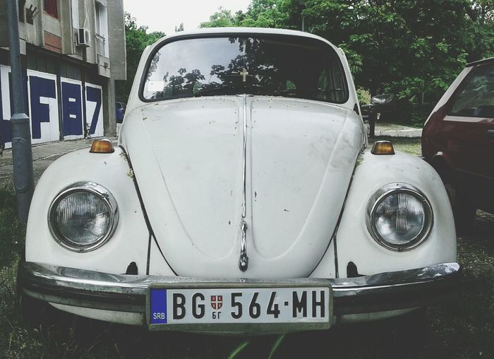 Car Collection VW Beetle White Car Vintage Cars Old Timer Volskwagen Walking Around The City  Streetphotography
