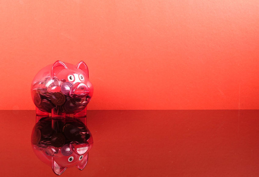 Saving concept with red piggy bank on red background. Piggy Bank Animal Animal Representation Art And Craft Cat Celebration Close-up Coin Colored Background Conceptual Photography  Copy Space Creativity Feline Holiday Indoors  Investment Mammal No People Red Representation Saving Concept Still Life Studio Shot Toy Wall - Building Feature