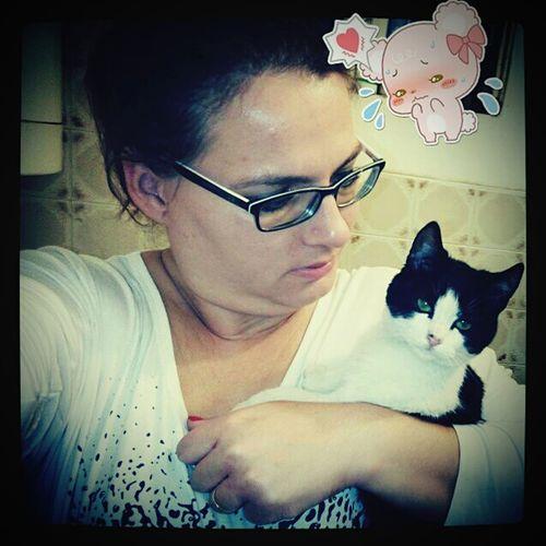 Szépségemmel, gyönyörűségemmel :) With my Beautiful Little Cat😍 Cat Cat♡ Cute Cute Cat Love Lowely Sweety  After Work My Sweet Cat Baby Cat Baby Cat♡