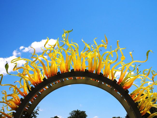 Blue Blue Sky Yellow Chihuly Mobotgarden MoBot Outdoors