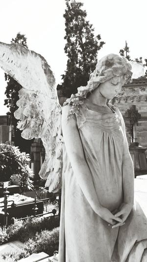 Angels Cemetery Rest In Peace Black & White