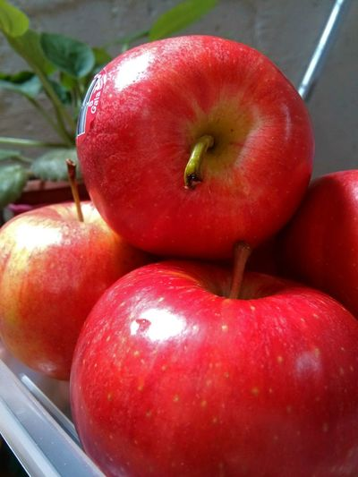 Ricas manzanas!!! Saborear... Frutas Saludable Fruits Aples Foodphotography Rojo Vitamins Manzanas Color Natural Natural Photography Color Portrait