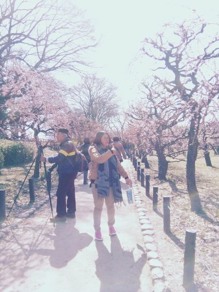 Sakura blossoms Springtime Tree Togetherness Sakura Day Full Length Outdoors Adult Women Standing People Adults Only Bonding Sakurablossoms Nature Sky Young Women Young Adult Photo Messaging Technology Photographing Japan Japanese  Japanese Style Beauty In Nature
