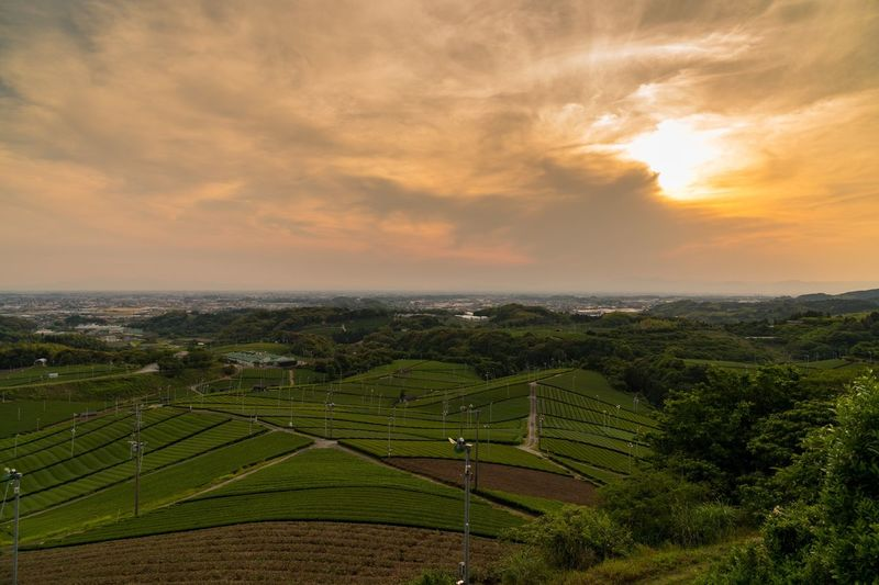Sky Cloud - Sky Beauty In Nature Sunset Nature Landscape Field Tranquility Tranquil Scene Scenics No People Outdoors Tree Rural Scene Architecture Day Greentea Sunset_collection Japan Sunrise