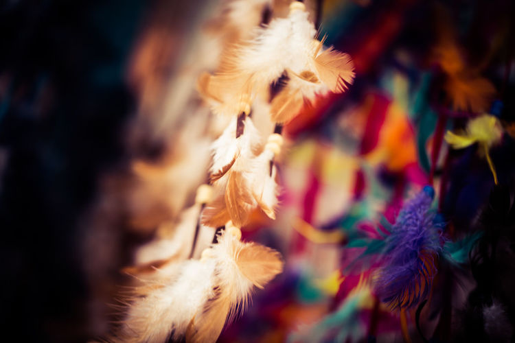 Feathers on Strings in the Wind Bali Bali, Indonesia Bright Colors Close-up Day Feather  Feathers Focus On Foreground Nature No People Outdoors Selective Focus Soft Softness Street Market Ubud Wind Fine Art Photography Colour Of Life