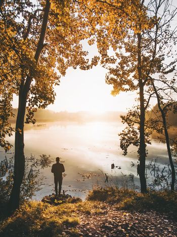 Lost In The Landscape Tree Nature Beauty In Nature Lake Rear View Tranquil Scene Full Length Tranquility Autumn Silhouette One Person Scenics Men Standing Leisure Activity Outdoors Day One Man Only Real People Branch