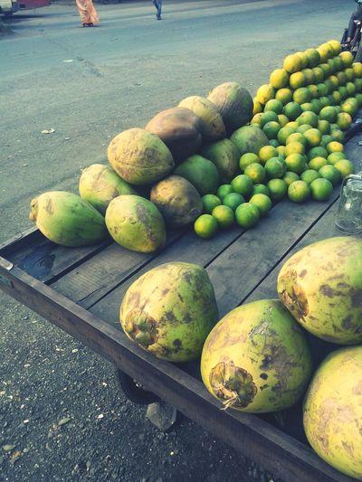 Coconut India Travel