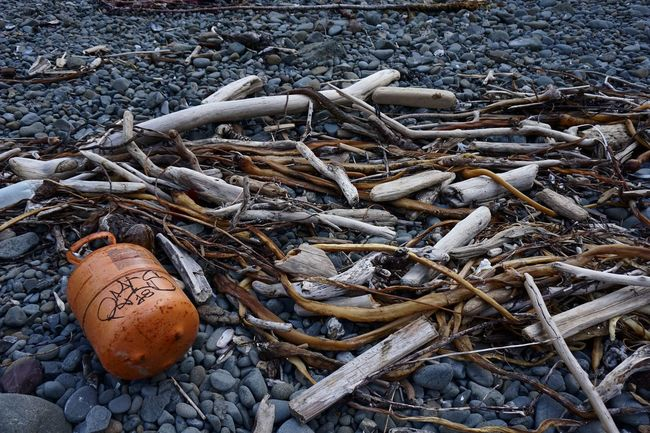 Ocean Trash Rocky Beach Driftwood Litter No People Outdoors Propane Tank Twig Wood - Material