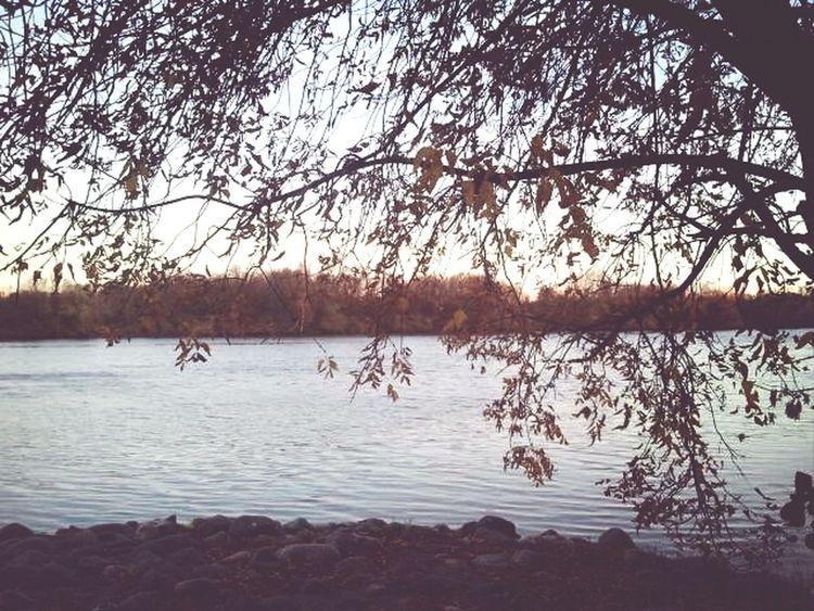 Autumn Lake Sky_collection Natural