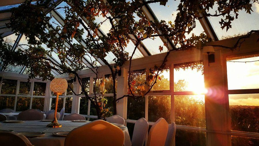 Weading Venue Sunset Atmosphere Evening EyeEm Gallery EyeEm Best Shots Smartphonephotography