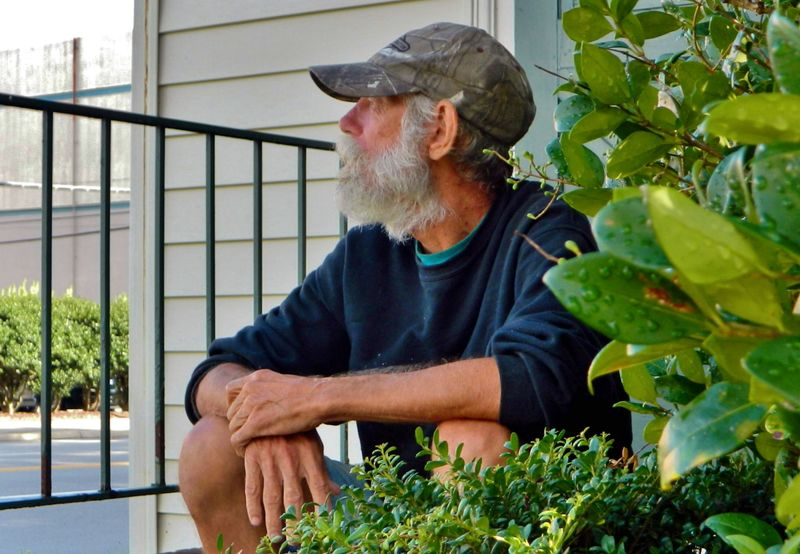 Good old boy just chillin Beard Bright Bushes Casual Clothing Chillin Close Up Country Boy Day Daydreaming Face Good Old Boys Green Hat Leaves Leisure Activity Lifestyles Mature Nice Old Older  Relaxing Sitting Sunny Day Thinking White Male