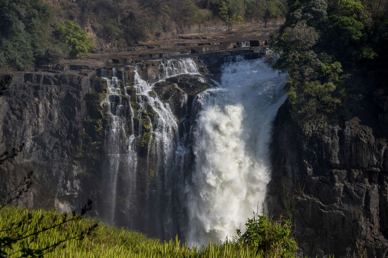 Scenic view of victoria waterfall in forest