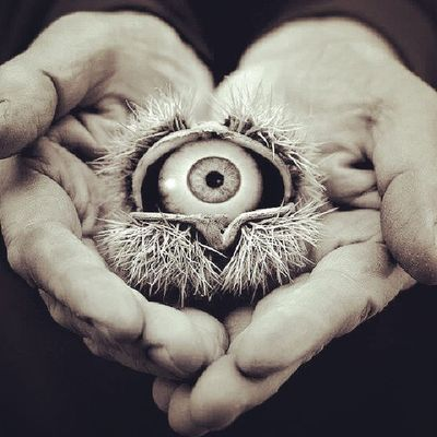 Hayirli Geceler Turkiyem Instaturkiye instagood instamood poz eyes good night