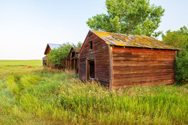 Agricultural Building Architecture Building Exterior Built Structure Cabin Cottage Day Environment Field Grass Green Color Growth House Land Landscape Nature No People Outdoors Plant Rural Scene Sky Tree Wood - Material