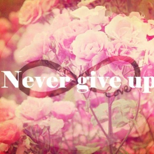 Never Give Up Love