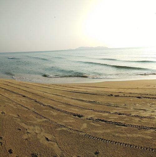 morning view at