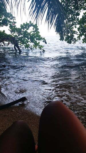 isla uvita Water Nature Sea Land Outdoors Beauty In Nature One Person