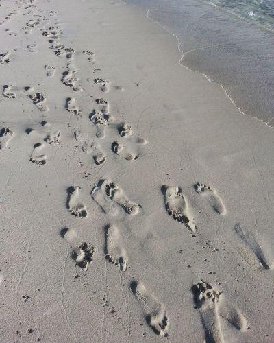 Foot steps on the sand. Sand Sand & Sea Footpath Foot Foot Steps Foot Step Foot Steps In The Sand Steps Summer Island SUMMER BREAK Summertime Malaysia Lankawi