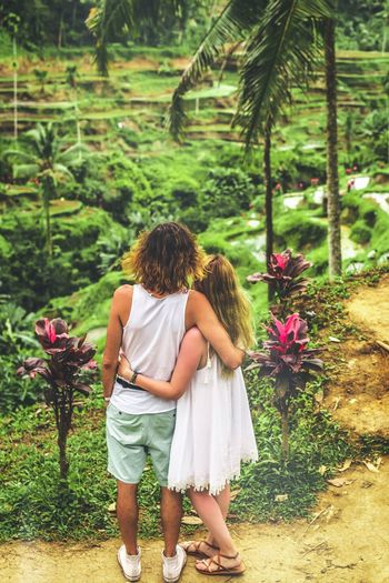 Tourists in Bali. Landscape Man Couple INDONESIA Bali Bali, Indonesia Rice Field Plant Full Length Flower Flowering Plant Rear View Women Real People Nature Leisure Activity Growth One Person Beauty In Nature Day Green Color Lifestyles Females Casual Clothing Standing Adult Outdoors