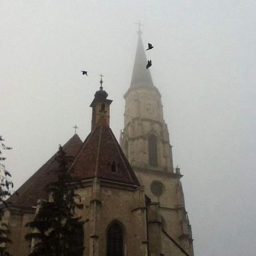 Eyeemphoto Cluj-Napoca Cluj Romania Architecture Architecture_collection Misty Birds In The Mist