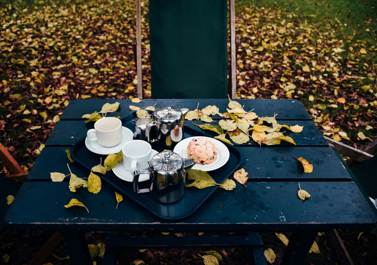 Alfresco Breakfast on an Autumn Day under Apple Trees Autumn Autumn Collection Autumn Colors Autumn Leaves Autumn🍁🍁🍁 Beautiful Beauty In Nature British Coffee Day Drink Eat Fall Fall Beauty Fall Colors Food Freshness Love Milk Nature Nature Photography No People Outdoors Scone Tea