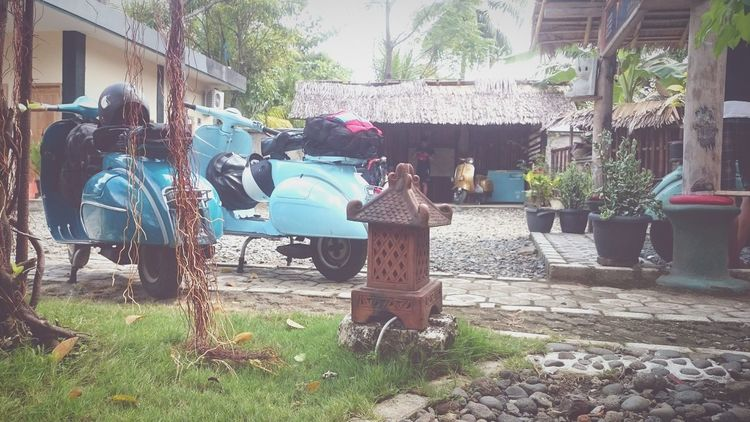 Vespa Indonesia Vespa Scooterlife Vespaspotting Vespavintage Vespagram Vespastyle VESPA Bella Vespalive Vespa, Piaggio Piaggio Scooteristforlife Scooters Scooterfun
