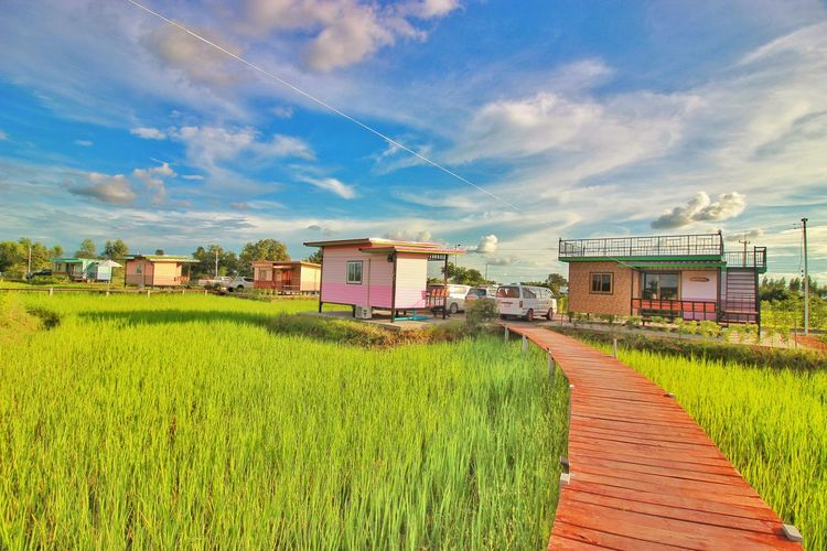 Scenic view of agricultural field by houses against sky