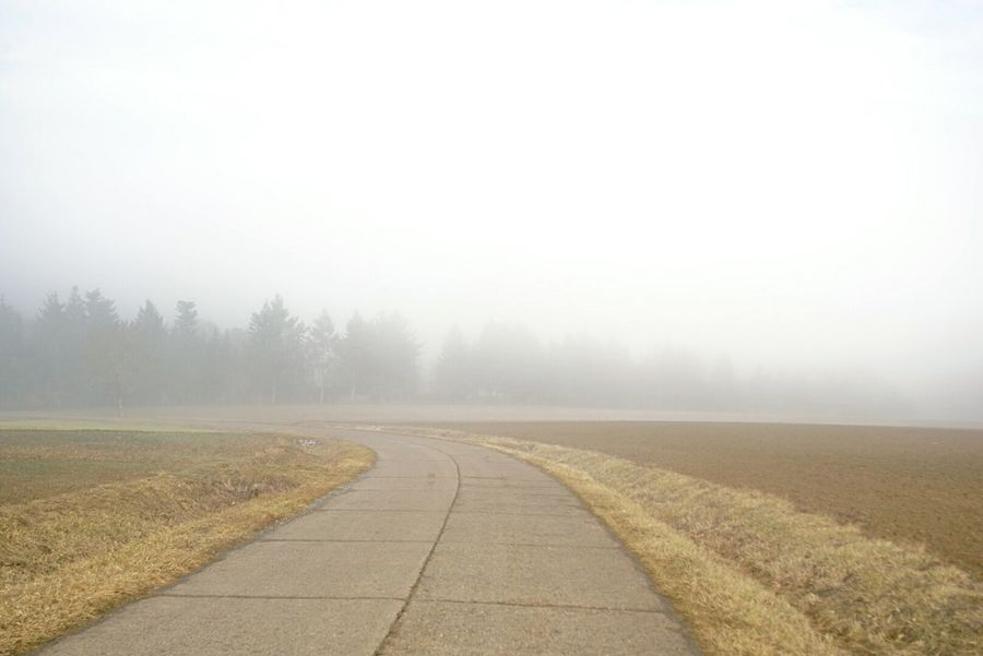 foggy fields Fog Nature Tranquility Beauty In Nature Landscape Outdoors Tristesse Outdoor PhotographySony A6000 Out In The Fields Winter 2017 Würzburg Road To Nowhere Foggy Morning Sunday Morning