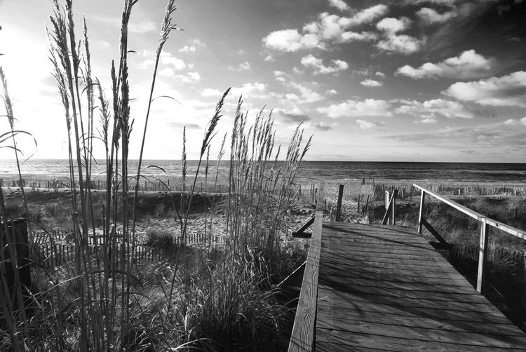 NAUTILUS BOARDWALK Atlantic Ocean Beautiful Boardwalk Cloud Fire Island Landscape Seascape SA Seagrass Seashore Sunrise