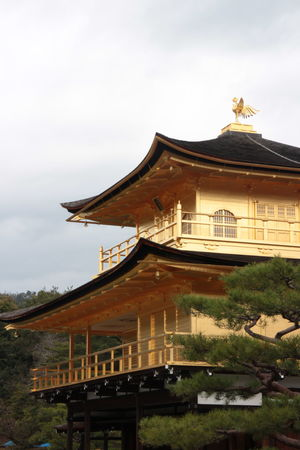 Architecture Building Exterior Built Structure Cloud - Sky Day Golden Temple Japan Japan Photography Kinkakuji Temple Kyoto Nature No People Outdoors Roof Sky Tree
