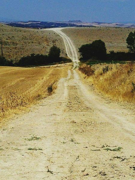 Whiteroads Cretesenesi Desert Of Accona