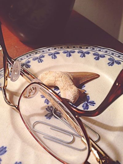 Shark Tooth Reading Glasses Tabletop Things